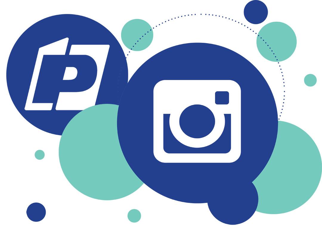 https://www.instagram.com/piccionifichet/